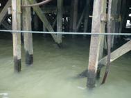 ウリンの桟橋